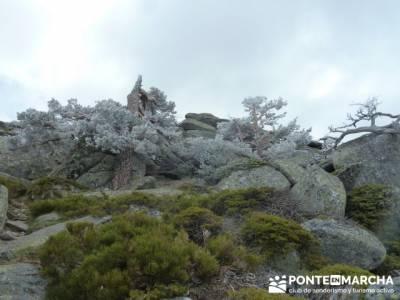 La Peñota y Peña del Arcipreste;excursiones montaña madrid;grupo senderismo